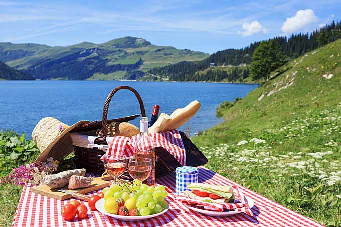 Top Outdoor Activities - Picnic